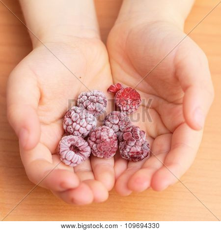 Frozen Raspberries In The Toddler Palms