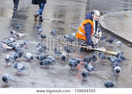 Hygiene Worker Pigeons Saint Petersburg.