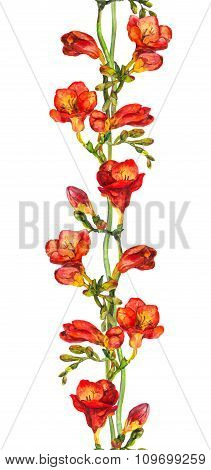 Seamless floral banner strip with hand painted colorful freesia flowers