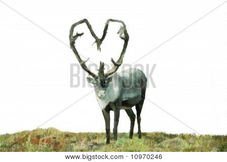 Caribou Valentine Painting
