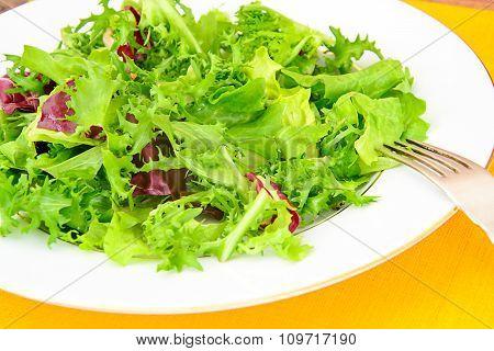 Salad of Arugula and Pomegranate