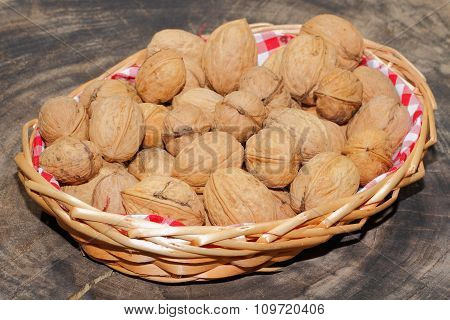 Walnuts, Hazelnuts, Nuts, Basket Harvested