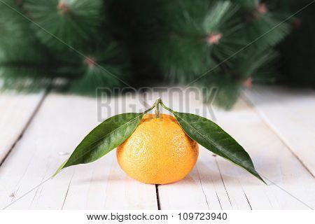 Fresh mandarine with leaves