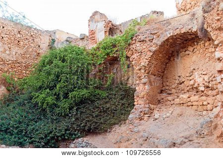 Collapsed Old City Wall With Overgrown Shrubs.