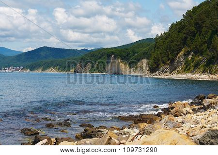 Amazing rocky sea shore with forest