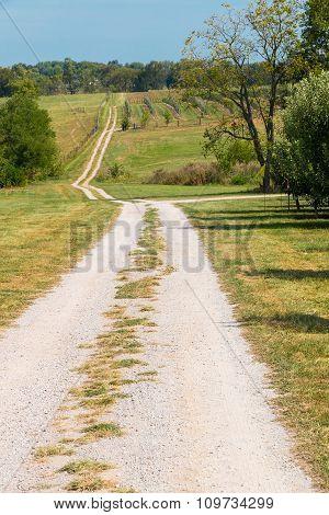 Farm Gravel Road