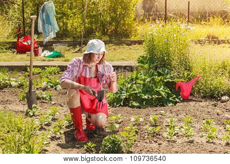 Woman With Gardening Tool Working In Garden