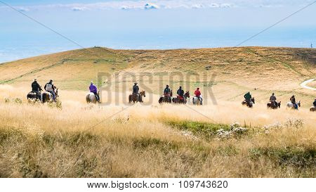 Horsemen Proceed In Single File Through High Grass.