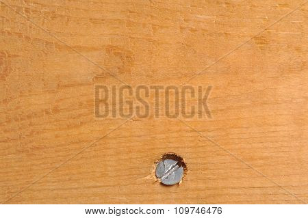Closeup Of A Plank And Screw