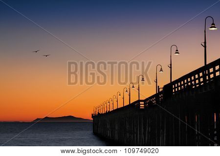 Birds flying home at sunset by the Pier