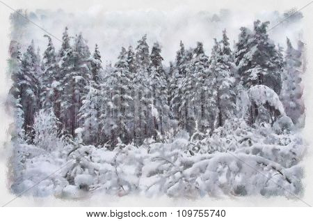 Winter abstract landscape forest in snow.