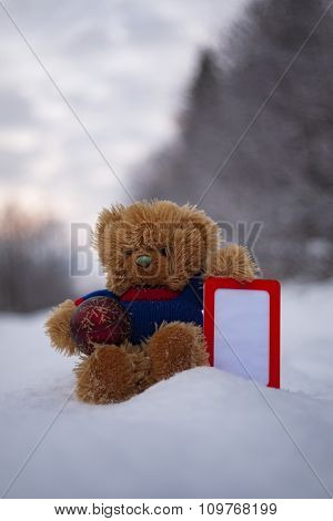 Teddy Bear With Empty Vertical Frame
