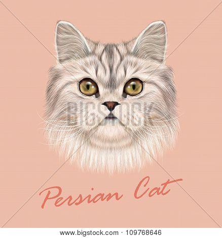 Vector Illustrated Portrait of Persian Cat.