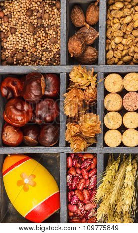 Spices In A Wooden Box