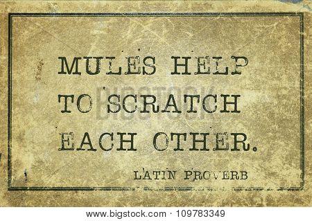 Scratch Others Lp