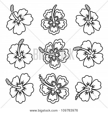 Vector Hibiscus Flower Outline Icons