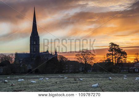 Winter Frosty Sunrise Landscape Salisbury Cathedral City In England