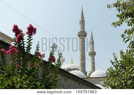 minarets and flowers