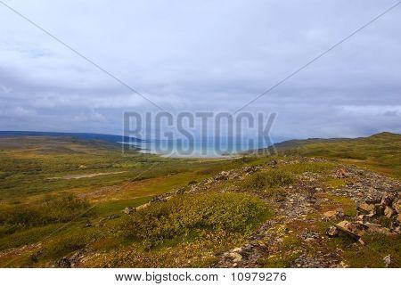 Arctic Tundra Landscape