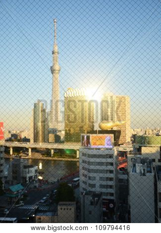 Tokyo Sky Tree Building At Sunset Through Wired Glass. Blurred Background