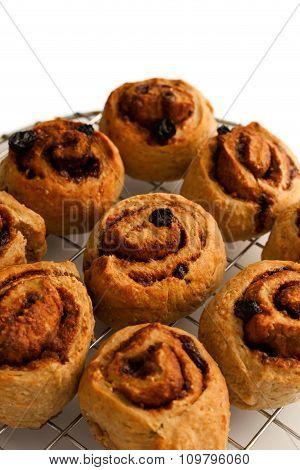 Cinnamon Rolls Freshly Baked