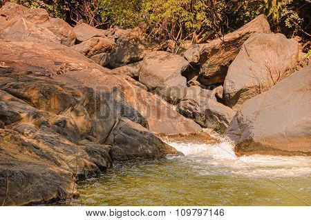 Small River In The Tropical Jungle Of India