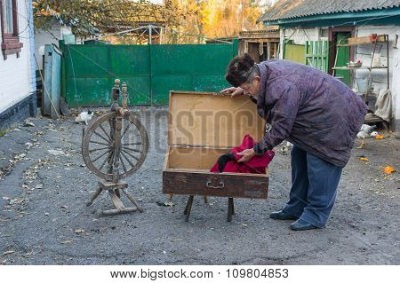 Ukrainian country man examines an ancient wooden trunk