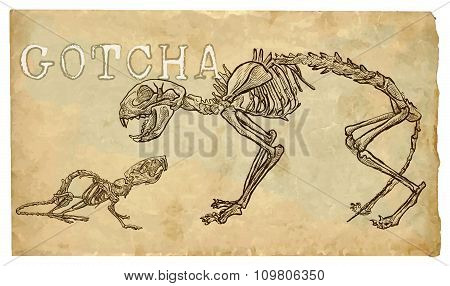 Cat And Mouse, Skeletons - Freehand Vector