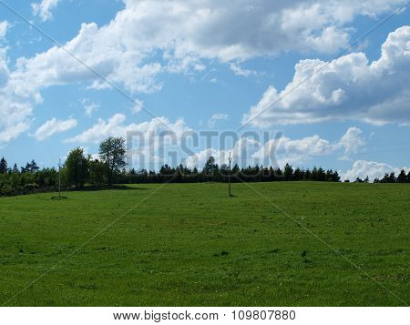 Spring Pasture , Forest And Sky In The Background