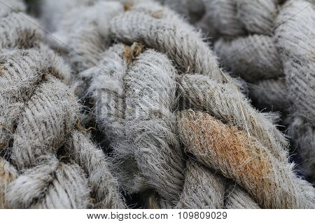 Old rope.