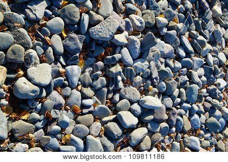 Stone On The Shore Of Lake Ontario.