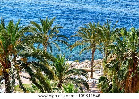 The Beach At Luxury Hotel, Mallorca, Spain