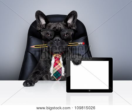 Office Worker Boss Dog