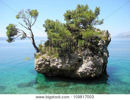 Green island in the sea