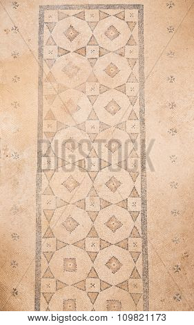 Mosaic In Terrace Houses, Ephesus Ancient City