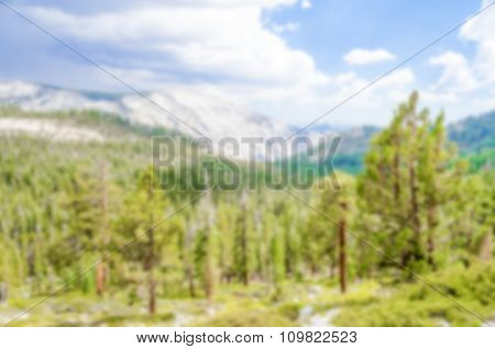 Defocused Background Of Valley And Forest At Yosemite National Park