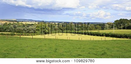 Beautiful summer farmland in countryside of Ireland