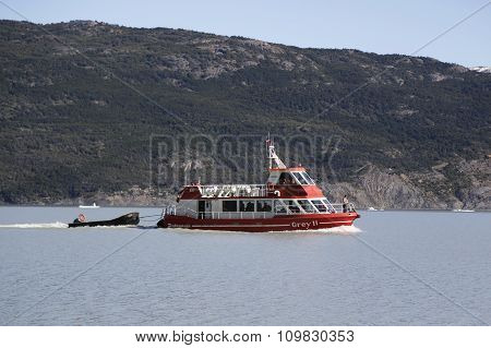 Cruise boat at Grey Lake in National Park Torres del Paine, Patagonia