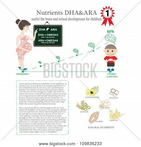 Pregnant. Nutrients Dha & Ara Useful The Brain And Retinal Development For Children. Infographic Kno
