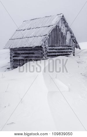 wooden house in winter forest
