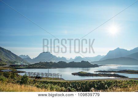 ground road, Lofoten islands, Norway