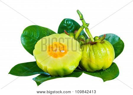 Garcinia Cambogia Fruits On Leaves, Isolated On White Background.