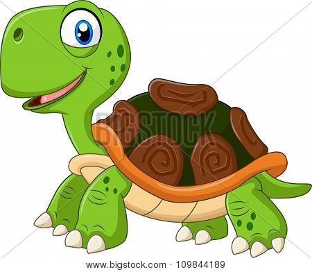 Cartoon funny turtle isolated on white background
