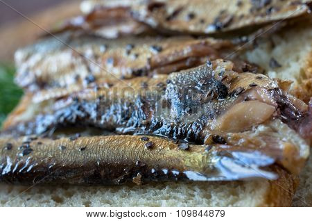 Smoking With Wood Sardine Appetizer
