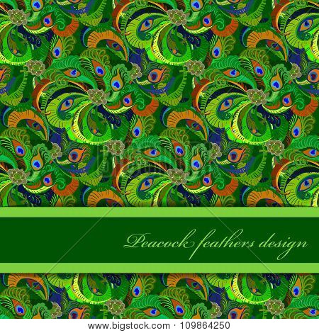 Green orange peacock feathers pattern background. Text place.