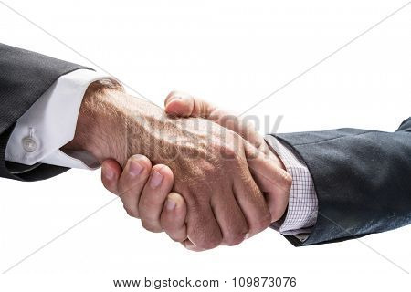 Handshake. Closeup shot of hands. File contains clipping paths.