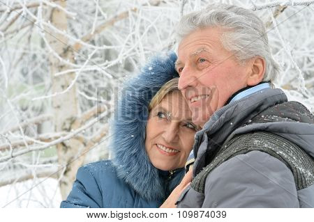 senior couple at winter outdoors