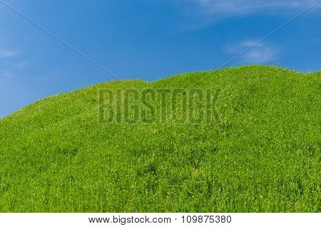 Landscape with green hills against blue sky