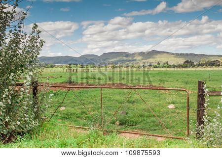 Farm Gate In Eastern Cape South Africa