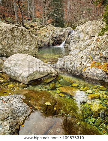 Woodland Stream Rushing Intp Crystal Clear Pool In Corsica